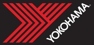 Flying_Y_4C-logo-White.eps